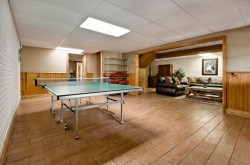 Lower level recreational area with ping pong table and dart board